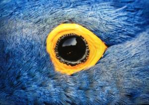 expo la nature dans la peau avec etendues sauvage agence de voyage